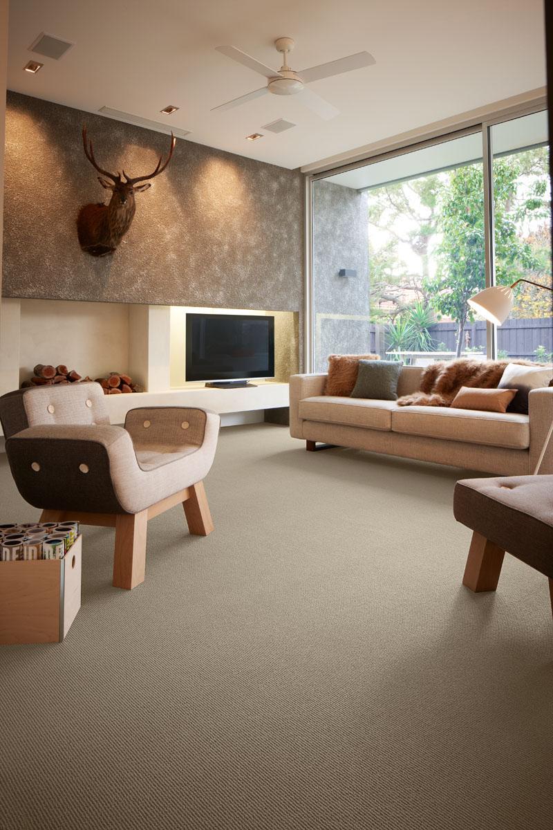 Vercelli 535 Seed - Carpet InstituteCarpet Institute