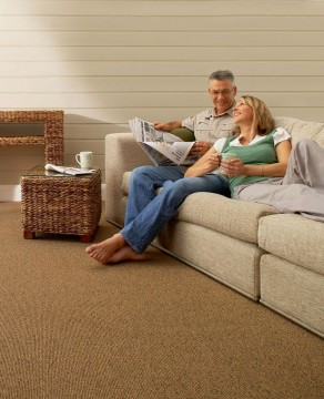 noise pollution and carpet